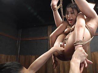 plighted japan bdsm